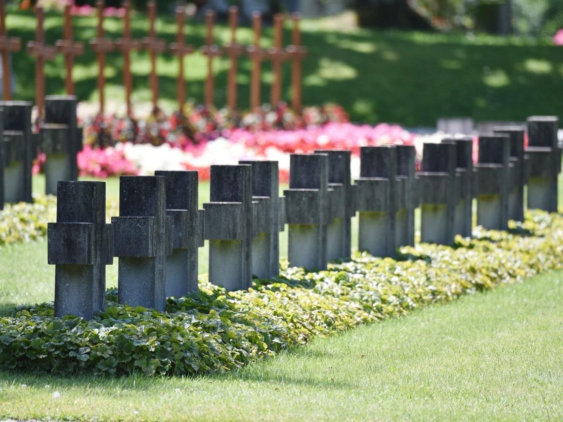 Tag des Friedhofs: Gräberreihe auf dem Schosshaldenfriedhof. (Foto: Daniela Friedli)