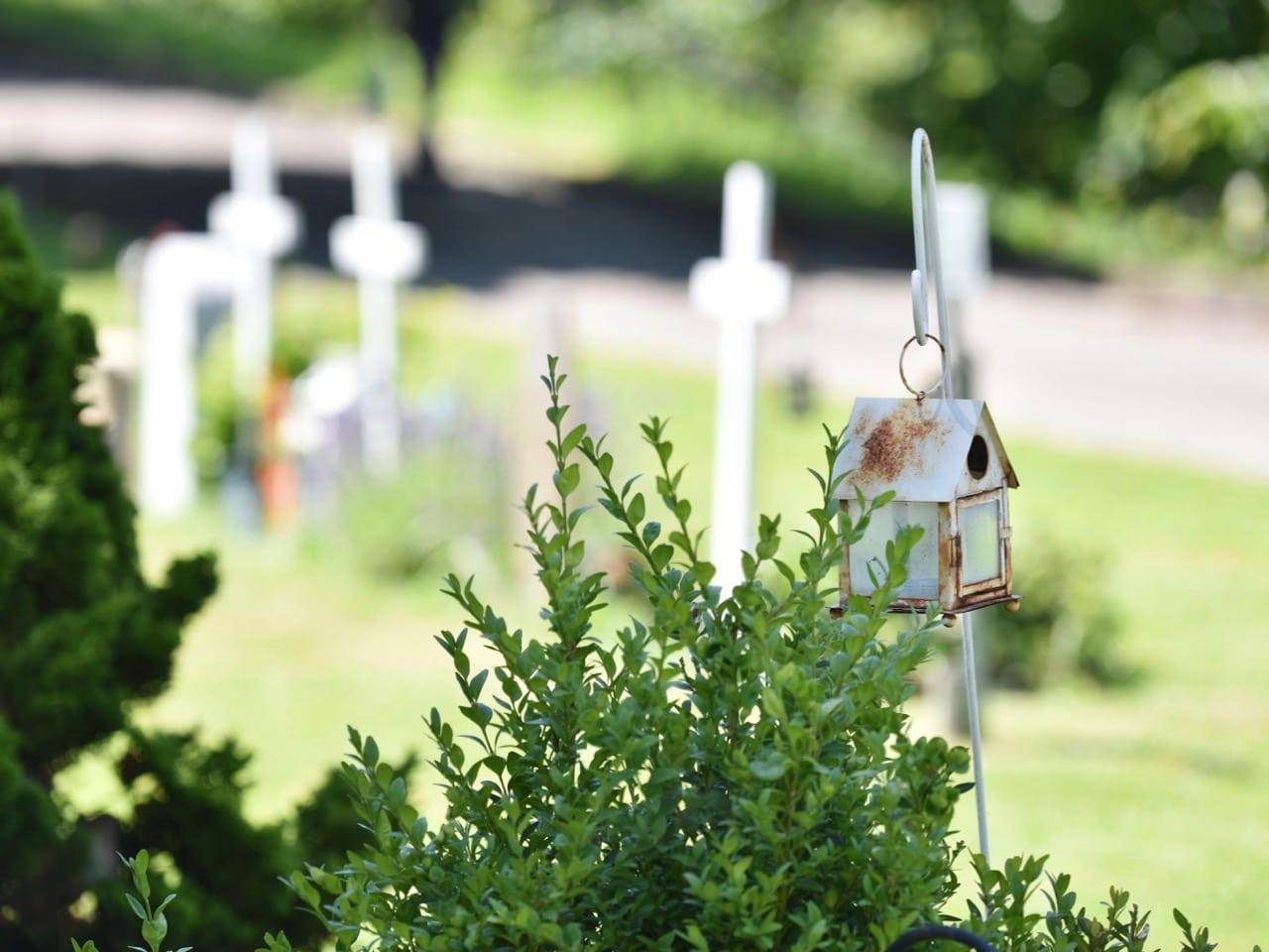 Tag des Friedhofs. Samstag, 17. September 2016 | Windlicht (Foto: Daniela Friedli)
