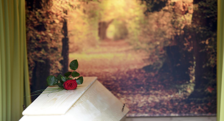 Bestattung. Rote Rose auf dem Sarg