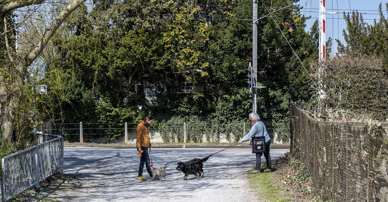 Corona-Seuche: Social-Distancing auf dem Hunde-Spaziergang