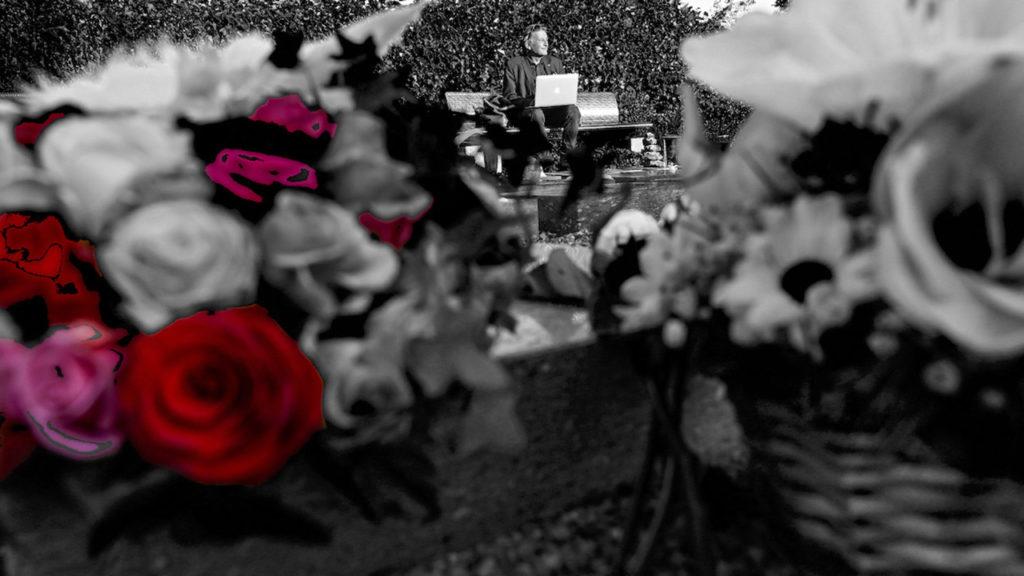 Rote Rosen auf Urnengrab Peter R. Schwegler.